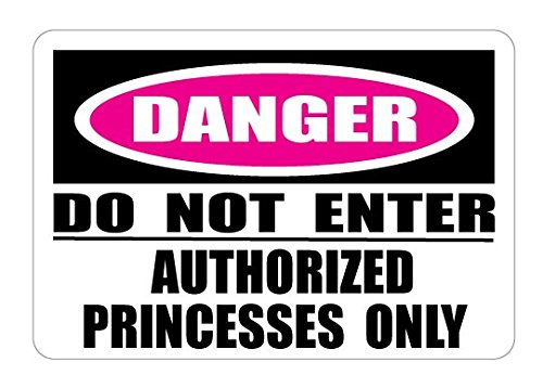 Authorized Princesses Only Danger Do Not Enter Street Sign Wall Decals  Princess Wall Decals Decor  Stickers