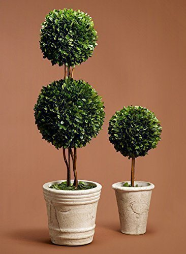 Handcrafted Potted Topiary Mixed SizesStyle Preserved Boxwood Ball Topiaries