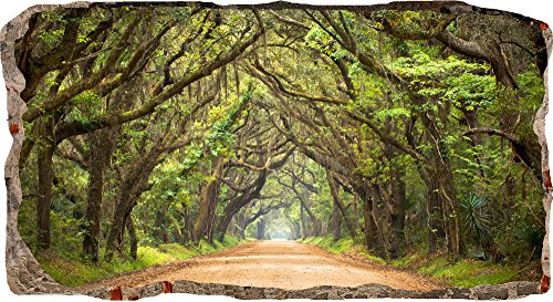 Startonight 3D Mural Wall Art-Photo Decor Window Green Tunnel Tree-Wall Paper That Glows In The Dark- Large 3228î By 5906î-Wall Mural Wallpaper for Living Room or Bedroom Nature Collection Wall Art